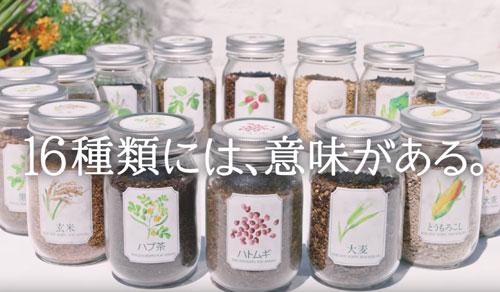 十六茶のCM4