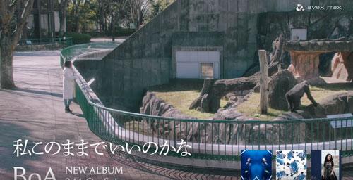 BoA新曲CM6